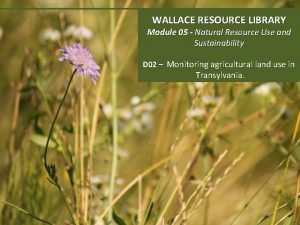WALLACE RESOURCE LIBRARY Module 05 Natural Resource Use