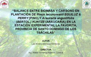 BALANCE ENTRE BIOMASA Y CARBONO EN PLANTACIN DE