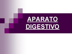 APARATO DIGESTIVO Compuesto por Tracto digestivo Se extiende