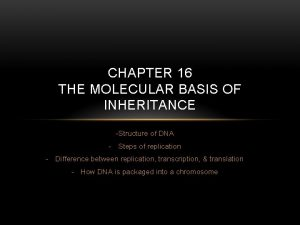CHAPTER 16 THE MOLECULAR BASIS OF INHERITANCE Structure