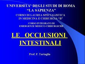 UNIVERSITA DEGLI STUDI DI ROMA LA SAPIENZA CORSO