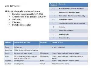 Numero di ossidazione Ciclo dell Azoto Molecole biologiche