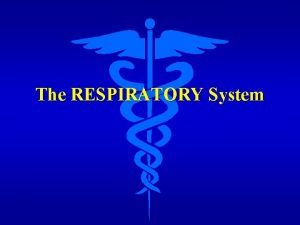 The RESPIRATORY System Functions of the Respiratory System