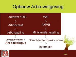 Opbouw Arbowetgeving Wet AMVB Arbobesluit Ministerile regeling Arbobeleidsregels