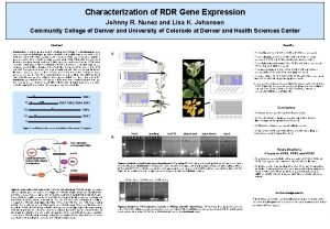 Characterization of RDR Gene Expression Johnny R Nunez