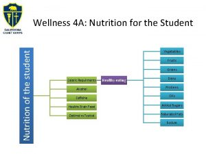 Nutrition of the student Wellness 4 A Nutrition