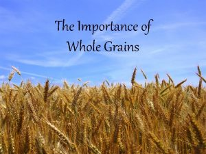 The Importance of Whole Grains My Pyramid Whole