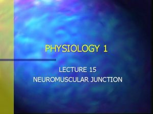 PHYSIOLOGY 1 LECTURE 15 NEUROMUSCULAR JUNCTION NEUROMUSCULAR JUNCTION