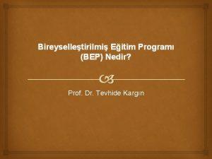 Bireyselletirilmi Eitim Program BEP Nedir Prof Dr Tevhide