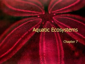 Aquatic Ecosystems Chapter 7 Freshwater Ecosystem Determined by