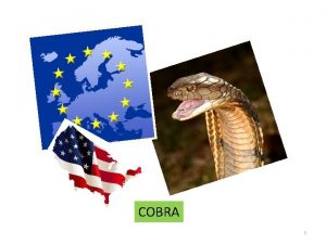 COBRA 1 Wall Flex Enteral Colonic Stent 2012