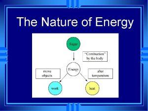 The Nature of Energy The Nature of Energy