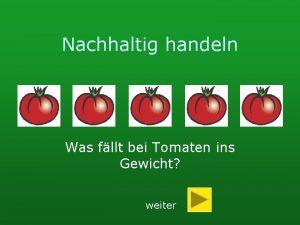 Nachhaltig handeln Was fllt bei Tomaten ins Gewicht