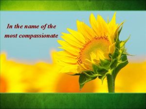 In the name of the most compassionate Every