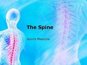 The Spine Sports Medicine Boney Anatomy Bones 33
