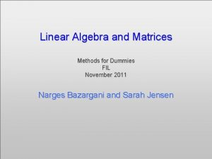 Linear Algebra and Matrices Methods for Dummies FIL