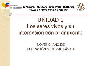 UNIDAD EDUCATIVA PARTICULAR SAGRADOS CORAZONES UNIDAD 1 Los