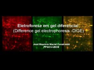 Eletroforese em gel diferencial Difference gel electrophoresis DIGE