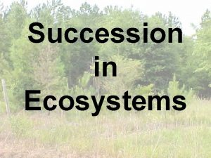 Succession in Ecosystems What caused this What caused