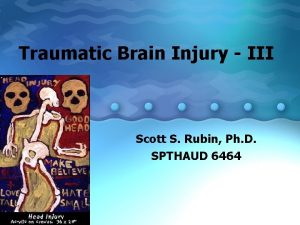 Traumatic Brain Injury III Scott S Rubin Ph