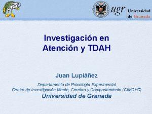 Investigacin en Atencin y TDAH Juan Lupiez Departamento