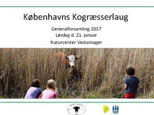 Kbenhavns Kogrsserlaug Generalforsamling 2017 Lrdag d 21 januar