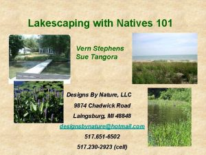 Lakescaping with Natives 101 Vern Stephens Sue Tangora