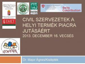CIVIL SZERVEZETEK A HELYI TERMK PIACRA JUTSRT 2013