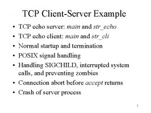 TCP ClientServer Example TCP echo server main and