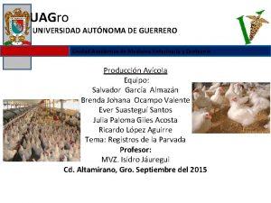 UAGro UNIVERSIDAD AUTNOMA DE GUERRERO Unidad Acadmica de