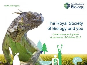 www rsb org uk The Royal Society of