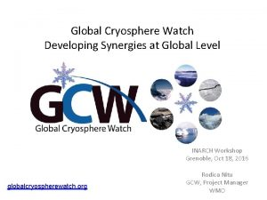 Global Cryosphere Watch Developing Synergies at Global Level