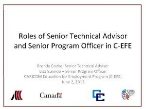 Roles of Senior Technical Advisor and Senior Program