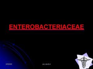 ENTEROBACTERIACEAE 10302020 alen vukeli dr 1 MORFOLOGIJA GRAM