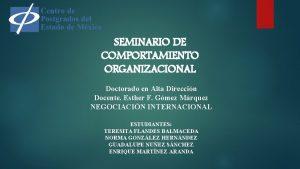 SEMINARIO DE COMPORTAMIENTO ORGANIZACIONAL Doctorado en Alta Direccin