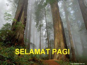 SELAMAT PAGI Nama Drs Kristiawan MSi NIP 19520104