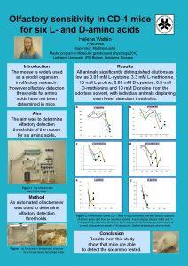 Olfactory sensitivity in CD1 mice for six L