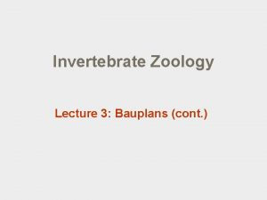 Invertebrate Zoology Lecture 3 Bauplans cont Lecture outline