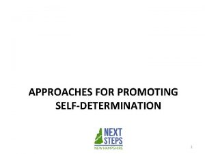APPROACHES FOR PROMOTING SELFDETERMINATION 1 Four Approaches for