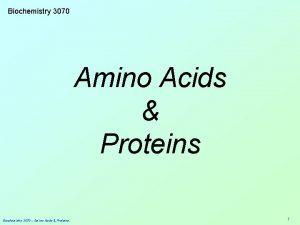 Biochemistry 3070 Amino Acids Proteins Biochemistry 3070 Amino