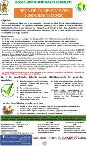 BECAS INSTITUCIONALES CSAEGRO BECA DE OLIMPIADAS DEL CONOCIMIENTO