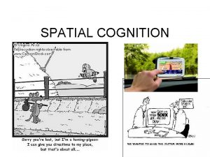 SPATIAL COGNITION XXX Spatial Cognition is concerned with