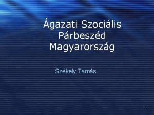 gazati Szocilis Prbeszd Magyarorszg Szkely Tams 1 Krnyezet