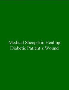 Medical Sheepskin Healing Diabetic Patients Wound Timeline 2008