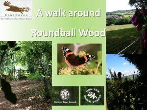 A walk around Roundball Wood Introduction Roundball Wood