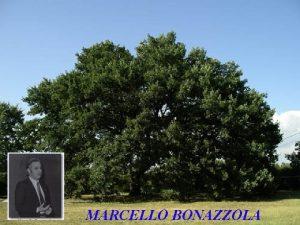 MARCELLO BONAZZOLA 1972 Dinamica Mentale 1973 I N