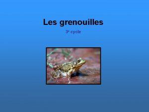Les grenouilles 3 e cycle Un amphibien fait