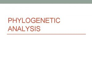 PHYLOGENETIC ANALYSIS Phylogenetics Phylogenetics is the study of