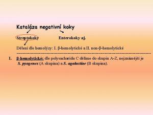 Katalza negativn koky I Streptokoky Enterokoky aj Dlen