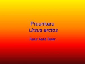 Pruunkaru Ursus arctos Kaur Aare Saar Vrvus Pruunkaru